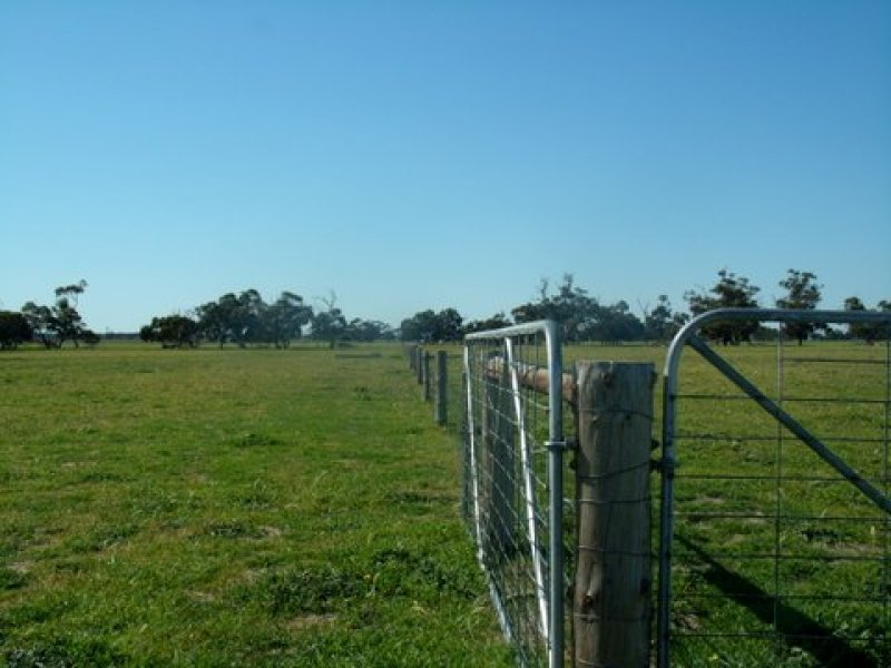 872 Prosser Road, Tintinara, SA 5266