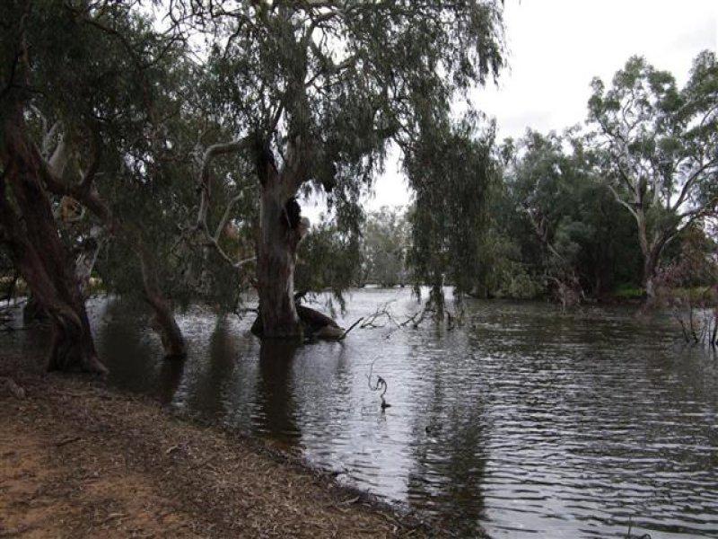 """""""Burragong"""" Condobolin - West Wyalong Road, Condobolin, NSW 2877"""