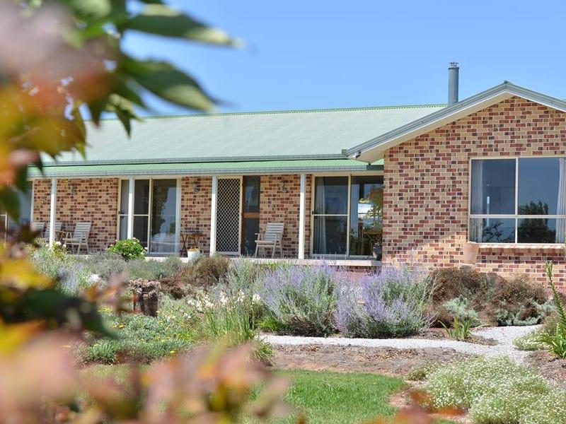 189 BELLEVUE ROAD, Tenterfield, NSW 2372
