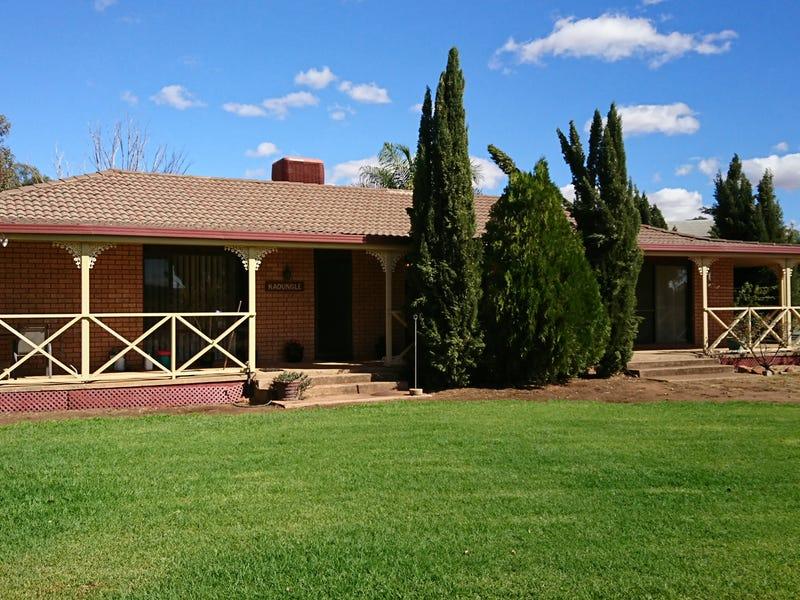 """8831  """"Kadungle"""" The Bogan Way, Trundle, NSW 2875"""