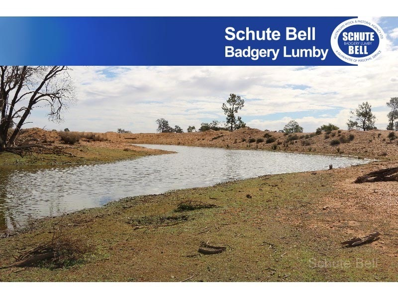 468 Emu Valley, Tullamore, NSW 2874
