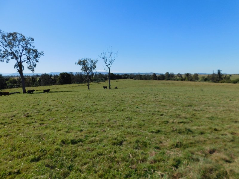 1364 Sextonville Road, Dobies Bight, NSW 2470