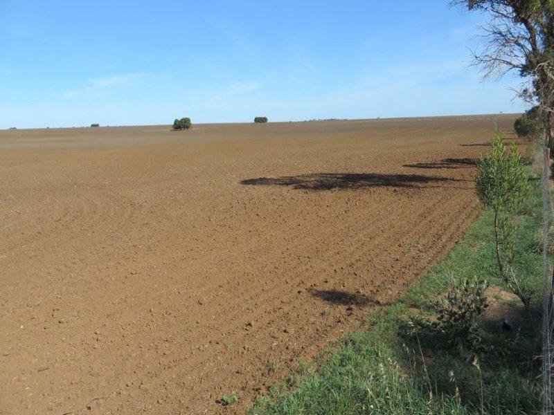 294 Gregor road, Curramulka, SA 5580