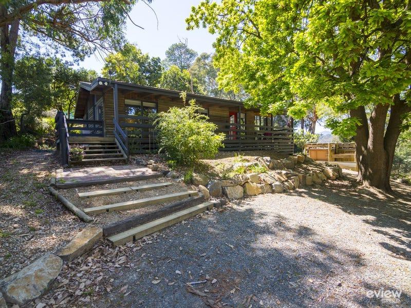 113 Lowes Road, Chum Creek, Vic 3777