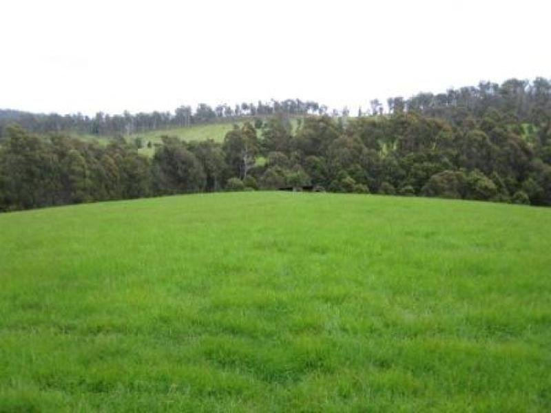 170 Dogwood Park Road, Jetsonville, Tas 7260