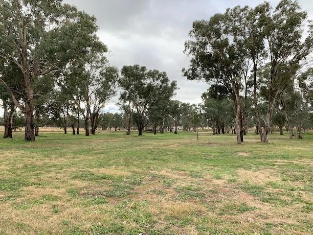 52 Bendick Murrell Road, Bendick Murrell, NSW 2803