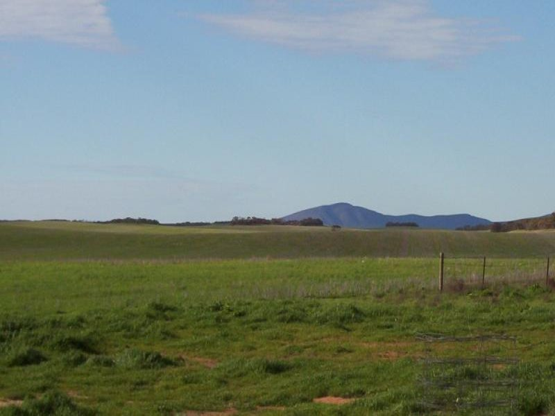 Section 41/ Hundred of Caralue, Koongawa, SA 5650