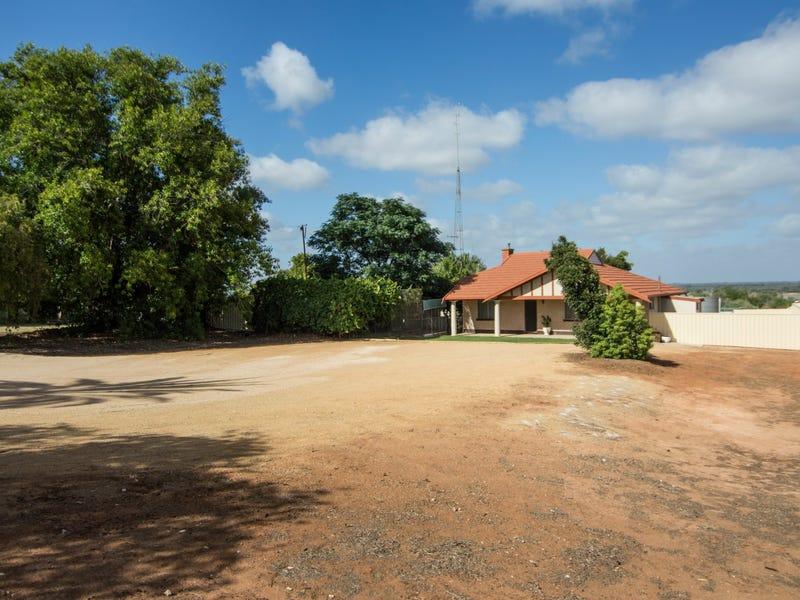 17 Old Sturt Highway, Berri, SA 5343