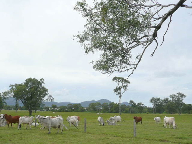 3 Lots Old Bruce Highway, Port Curtis, Qld 4700