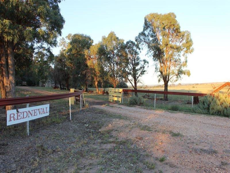 19 Patrick Rd, Dunedoo, NSW 2844
