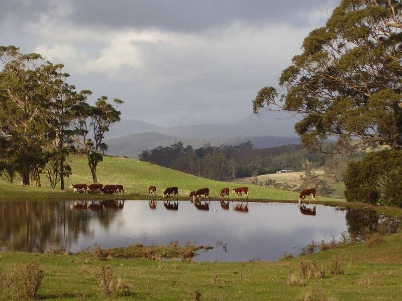 Browns Road, Copping, Tas 7174