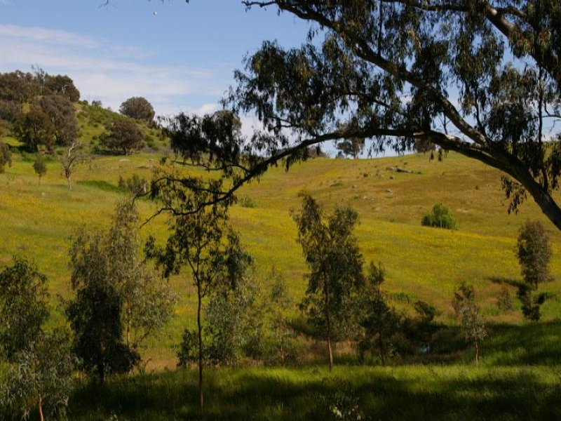 55 Saw pit gully road, Boho, Vic 3669