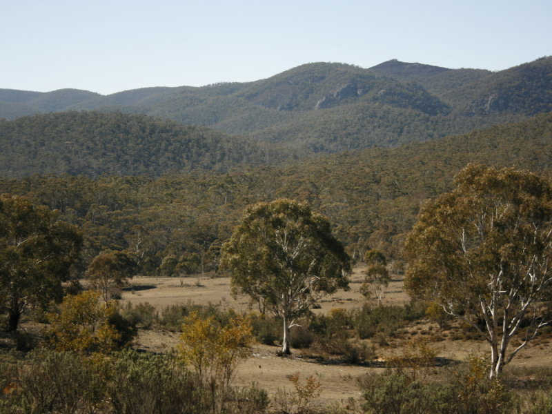 Lot 1 Dangelong Rd, Cooma, NSW 2630