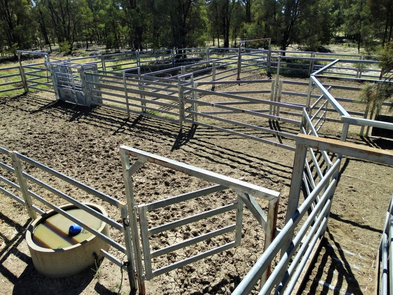 807 ACRES Cameby District, Chinchilla, Qld 4413