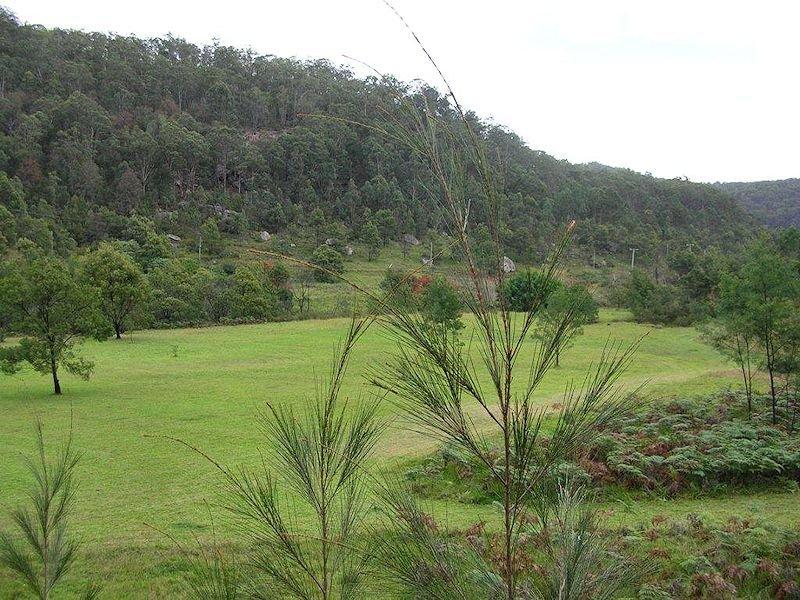 103 Bagnalls Creek Road, Paynes Crossing, NSW 2325