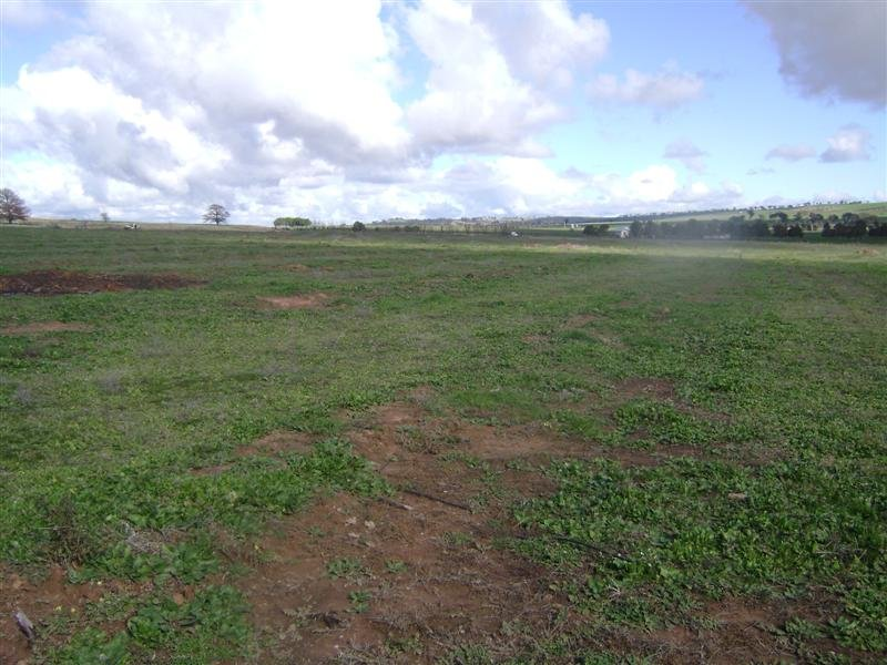 Lot 1 Wirrimah Road, Wirrimah, NSW 2803