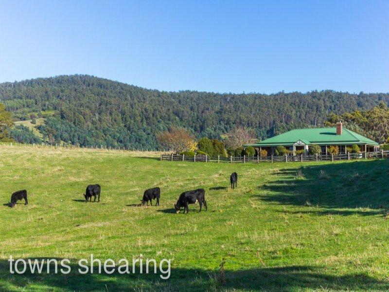 5 Barretts Road, Karoola, Tas 7267