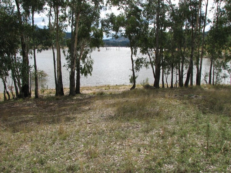 Lot 31 Foggs Crossing Road, Bigga, NSW 2583