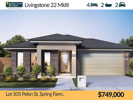 Lot 505 Pekin Street, Spring Farm, NSW 2570