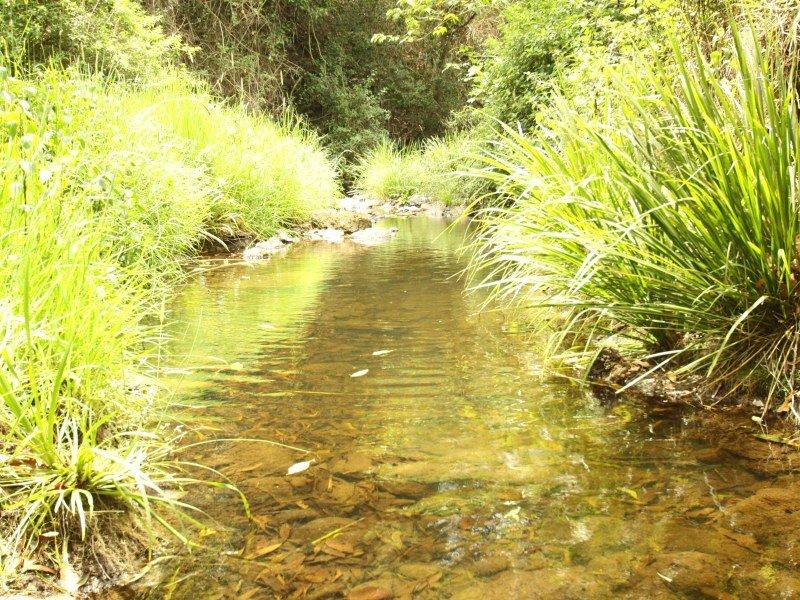 274 Mountain Top Road, Georgica, NSW 2480