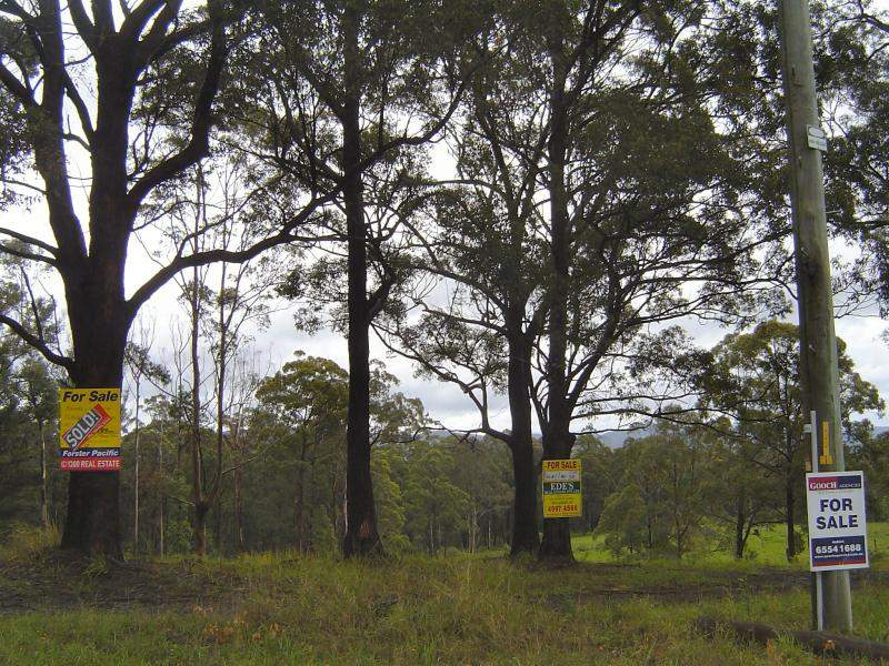 Lot 201 Hubbards  Rd, Wootton, NSW 2423