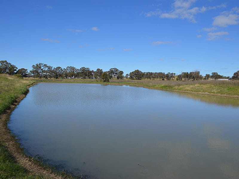 Lot 2 Snelsons Lane, Gulgong, NSW 2852