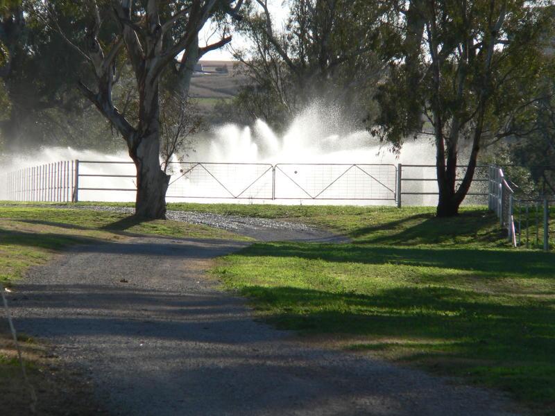 114 McCarthys Lane, Hallsville, NSW 2340