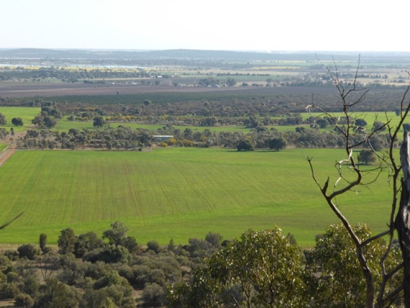 """Ridge Top"" Farm 1644 McPherson's Road, Beelbangera, NSW 2680"