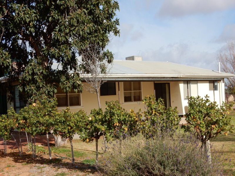 81 Wills Rd, Pomona, NSW 2648