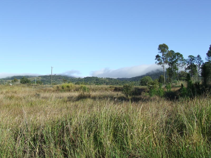 Lot 233 Stevenson Road, Glenwood, Qld 4570