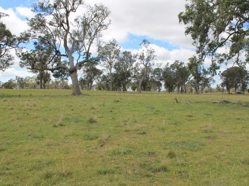 Lot 323 Torrington Rd, Deepwater, NSW 2371