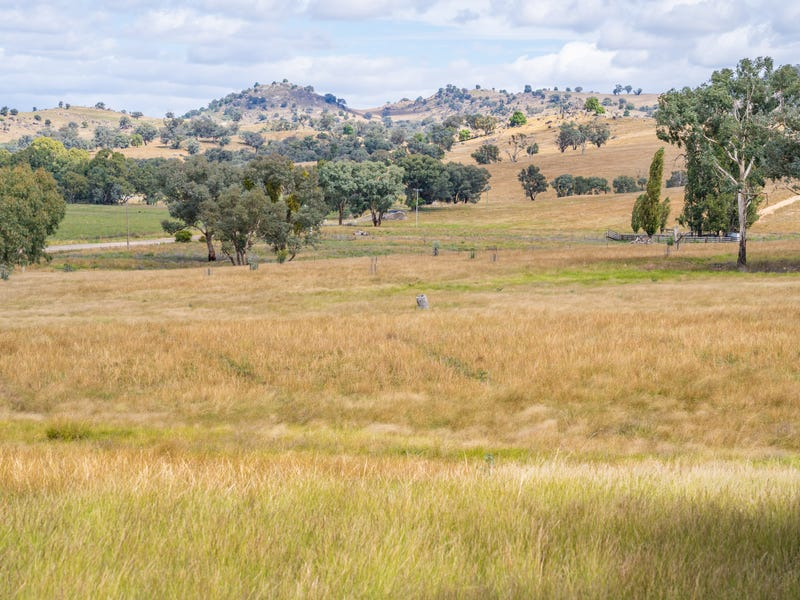 3705 Frogmore Road (Hovells Creek), Cowra, NSW 2794
