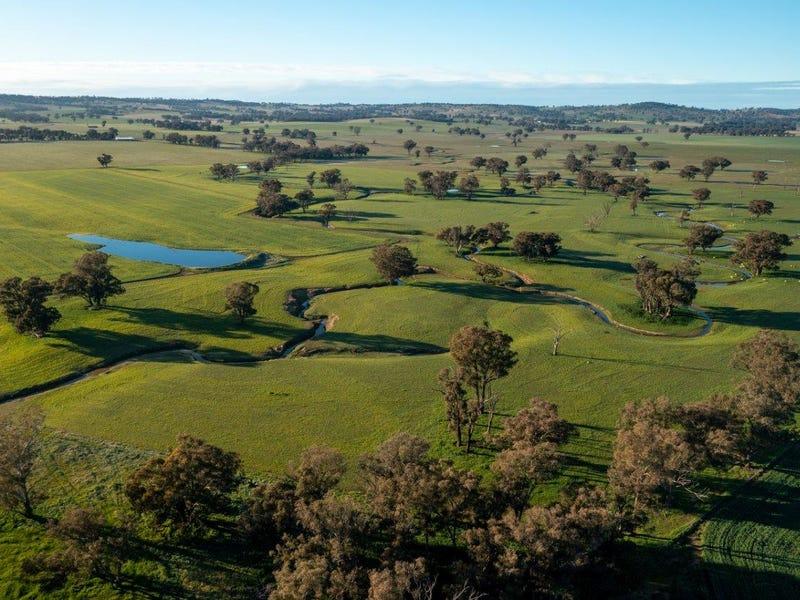 1679 Stockinbingal Road, Cootamundra, NSW 2590