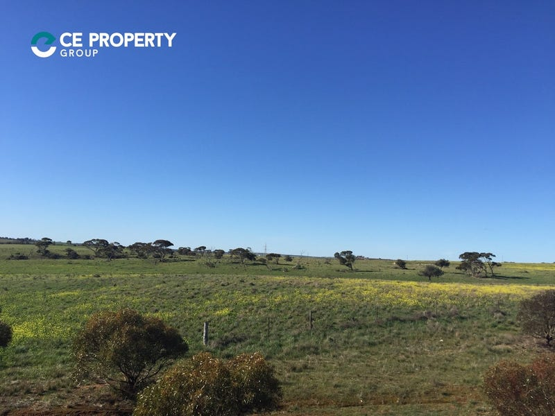 Lot 599 Caloote Road, Caloote, SA 5254