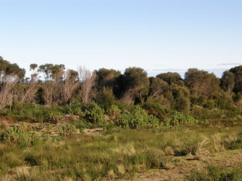 Lot 37073 Thunder & Lightning Road, Cape Barren Island, Tas 7257