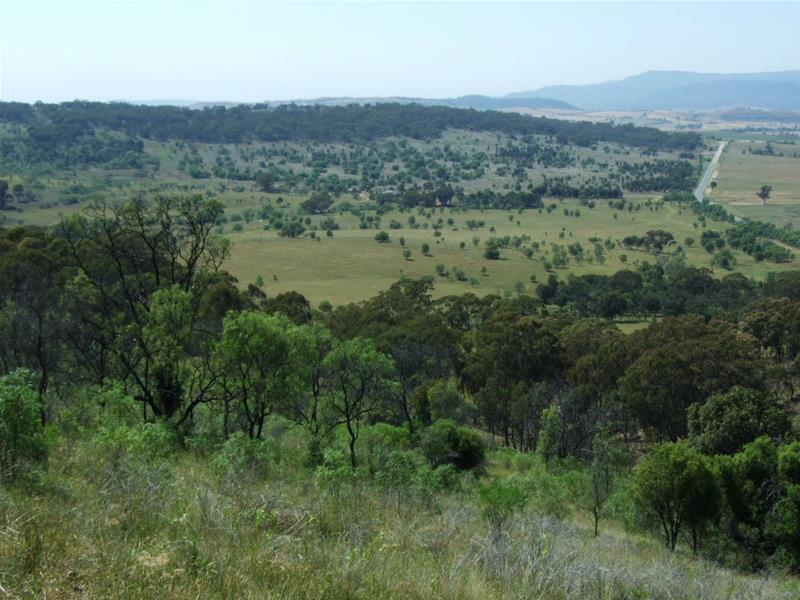 4372 Golden Highway, Denman, NSW 2328