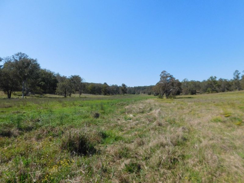 Lot 377 Pitches Road, Dyraaba, NSW 2470
