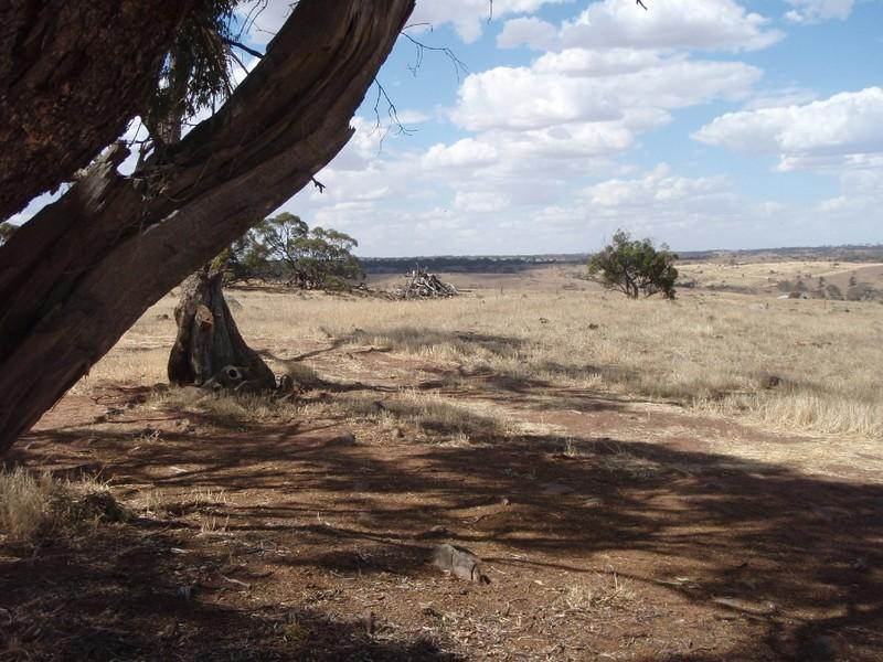 RSD 9B Rams Road, Rockleigh, SA 5254