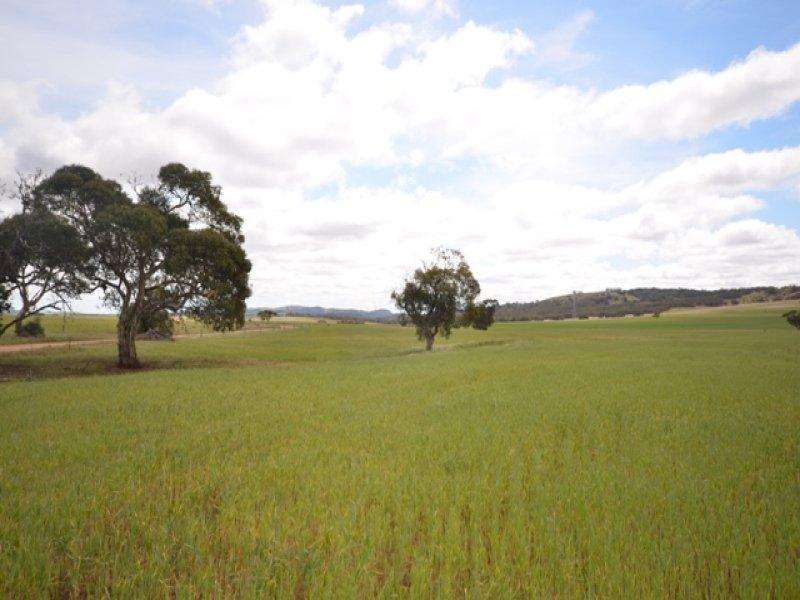 Various Secs Koo-owie Gap Road, Emu Downs, SA 5381