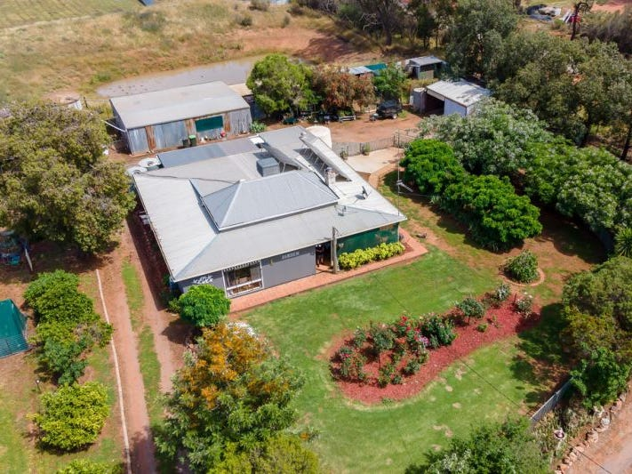 2323 Millwood Road, Coolamon, NSW 2701