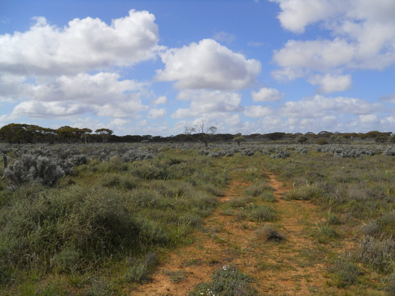 Lot 101 Stockroute Road (Public Road), Mount Mary, SA 5374