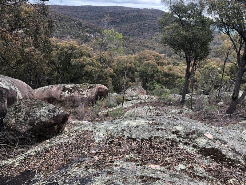 Proposed Lot 1, Reids Flat Road, Bigga, NSW 2583