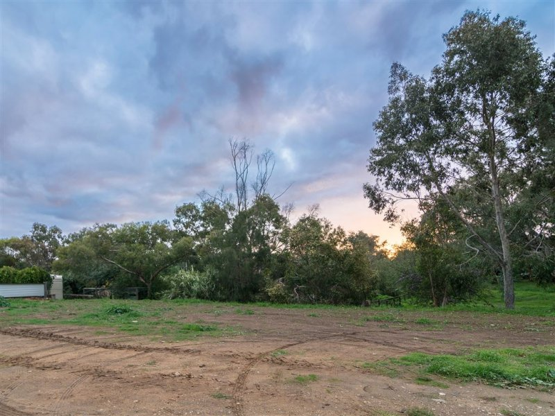 Lot 272 Macdonnell Terrace, Springton, SA 5235