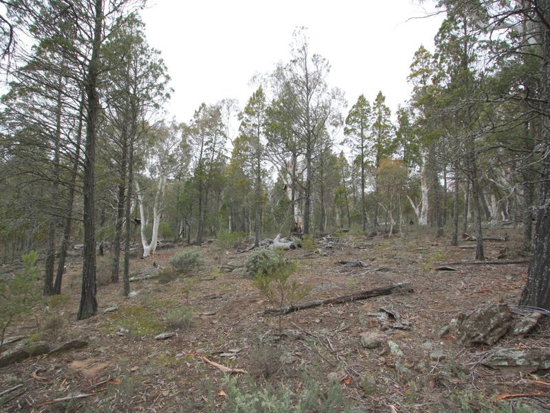 Lot 5 Woodlands Drive, Cooma, NSW 2630