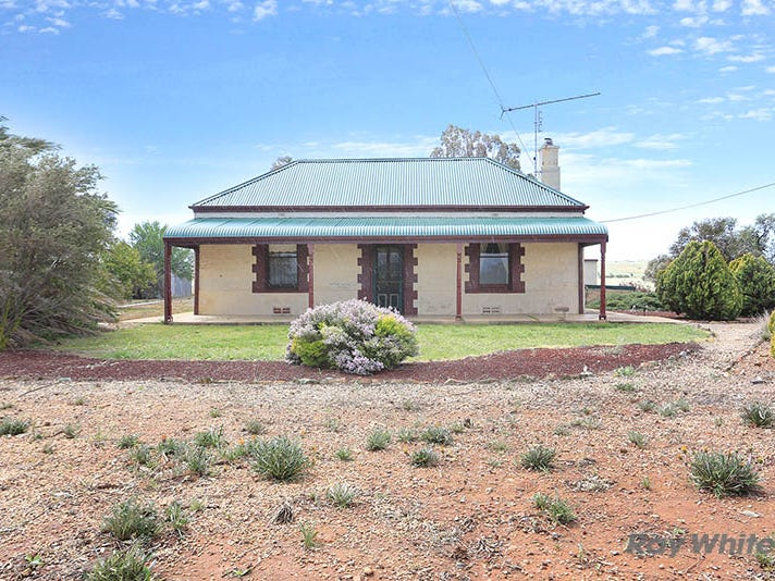 2483 Black Springs Road, Robertstown, SA 5381