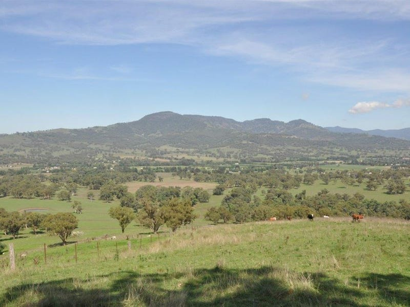 "Lot 221 Haydons Woolshed Rd, ""Harden View"", Blandford, NSW 2338"