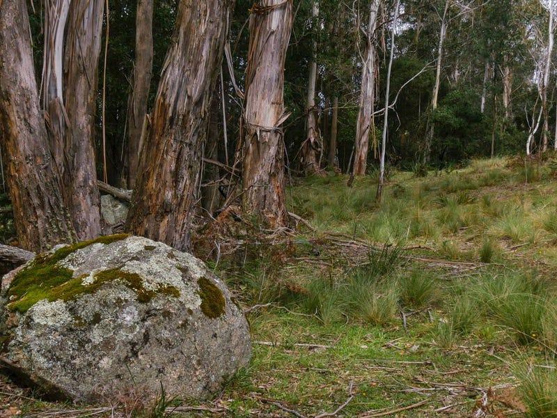 """664 Harolds Cross """"Timber Tops"""" Road, Harolds Cross, NSW 2622"""