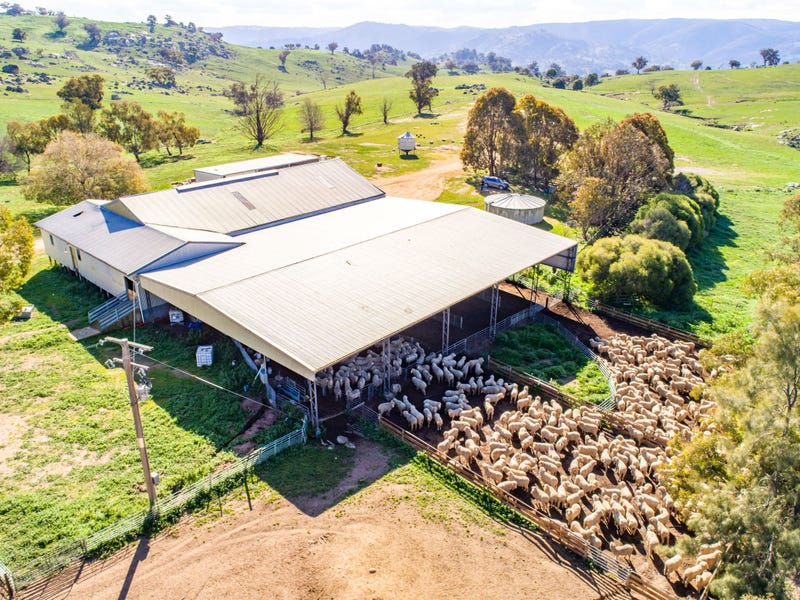 635 Decca Road, Bigga, NSW 2583