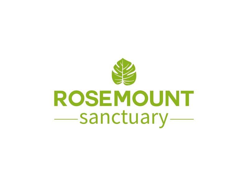47 Petrie Creek Road, Rosemount, Qld 4560