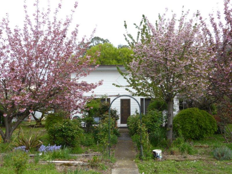 1701 Glenora Rd, Bushy Park, Tas 7140